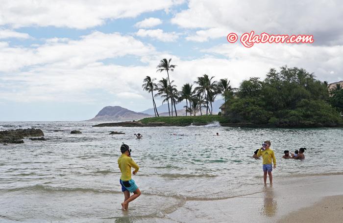 ハワイのシュノーケル・初心者もできるスポット