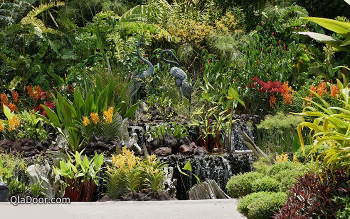 シンガポール植物園の国立蘭園