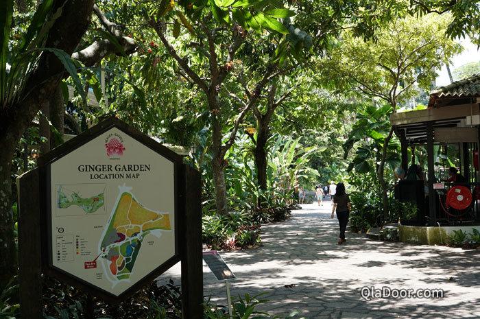 シンガポール植物園のジンジャーガーデン
