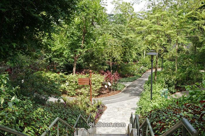 シンガポール植物園中のヒーリング・ガーデン