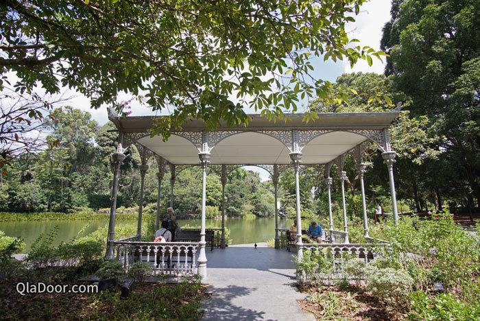 シンガポール植物園の白鳥の湖