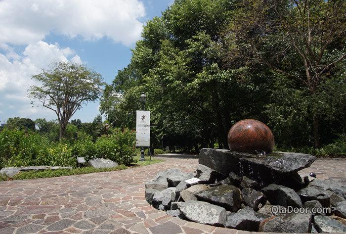 シンガポールボタニックガーデンの景色
