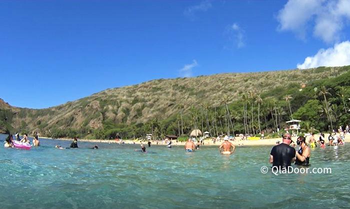 ハナウマ湾(ハナウマベイ)のシュノーケリングの混雑度合