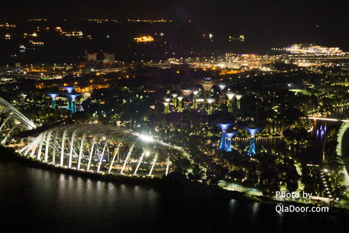 シンガポールフライヤーから見たガーデンズバイザベイの夜景