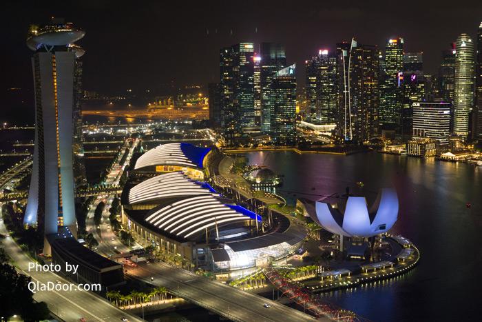 シンガポールフライヤーからのマリーナベイの夜景