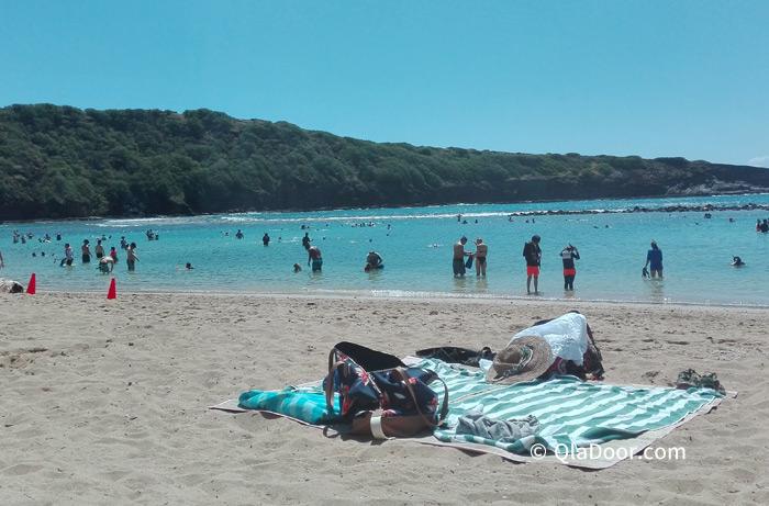 ハワイ・ハナウマ湾旅行の貴重品管理や注意点