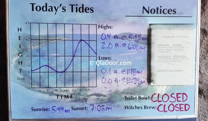 ハナウマ湾の干潮と満潮のグラフのお知らせ