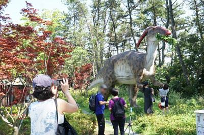 釜山松島の恐竜博物館