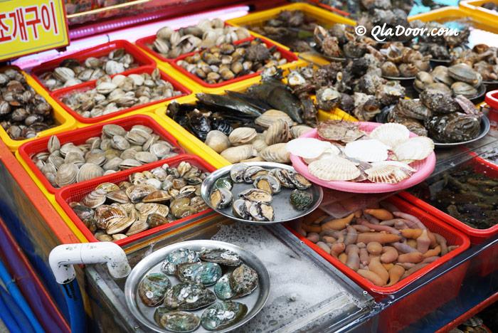 チャガルチ市場の値段と相場