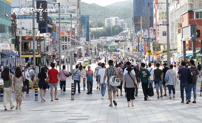 韓国の社会