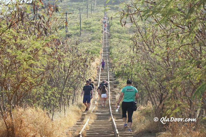 ハワイのおすすめ観光地・ココヘッドトレイル