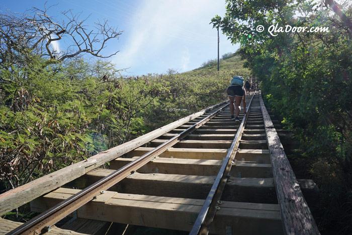 ハワイブログ旅行記・ココヘッドトレイル