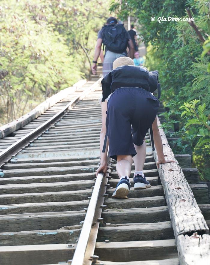 ココヘッドトレイル登り中