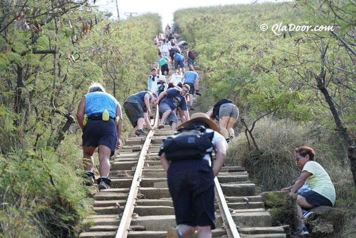 ハワイの隠れ名所・ココヘッドトレイル