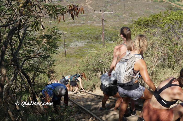 ココヘッドトレイルから下山中の観光客