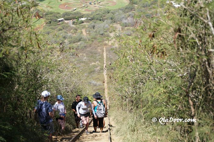 ハワイの隠れた山登りの名所・ココヘッドトレイル