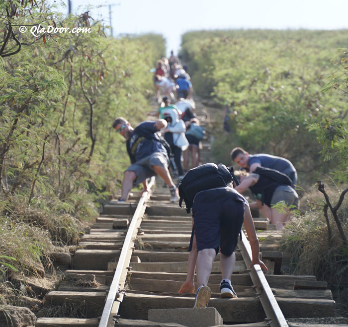 ハワイのココヘッドトレイルの登り体験記