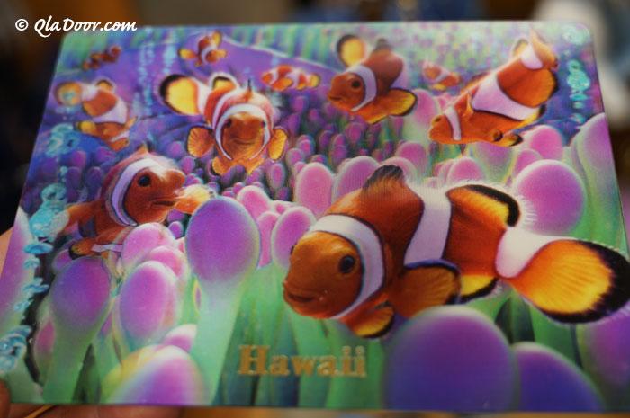 ハワイのお土産・子供が喜ぶ3Dはがき